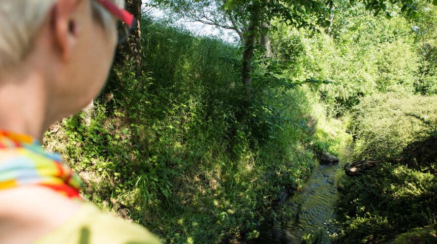 Sydgården, Compassion Fokuseret Terapi, grønne områder